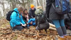 Wilderness Medicine Module (Fryeburg, ME) @ Fryeburg Rescue